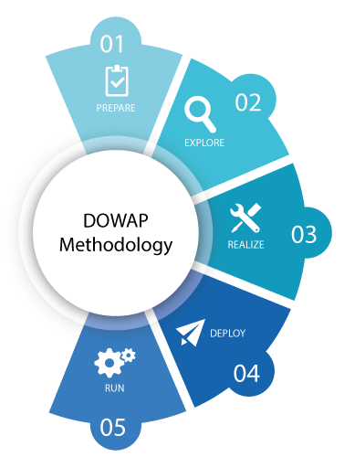 DOWAP SAP IBP RDS